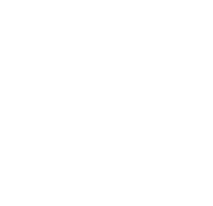 Bion Systems ISO 9001
